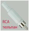 RCA (тюльпан)