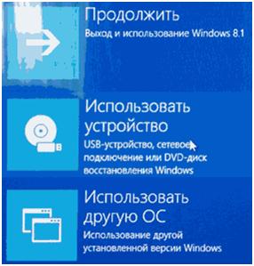 рис.2. Перезагрузившись, компьютер отобразит синее окно, где выбираем «Использовать устройство»